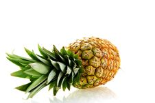 Free Fresh Ripe Pineapple Over White Background Royalty Free Stock Photo - 5212585