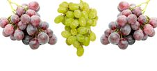 Free Isolated Fresh Grapes Royalty Free Stock Photos - 5213278