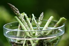 Asparagus - Asparagus Officinalis Stock Images