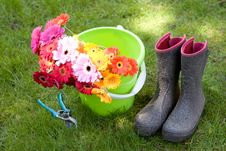 Free Daises In A Bucket, Secateurs & Boots - Yardwork Royalty Free Stock Photography - 5214727