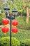 Free Red Lanterns Royalty Free Stock Photo - 52153775