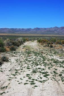 Free Desert Road Royalty Free Stock Image - 5220616
