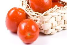 Free Fresh Tomatoes With Waterdrops. Stock Photography - 5220642