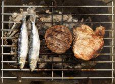 Free Grilled Fish And Meat Royalty Free Stock Image - 5221396