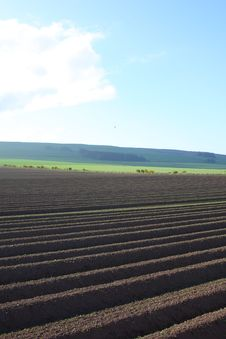 Free Ploughed Field Stock Photography - 5221492