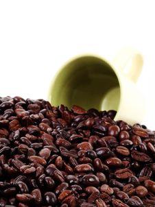 Free Coffee Stock Image - 5221891