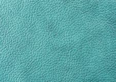 Free Natural Leather Texture Royalty Free Stock Images - 5221989