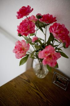 Free Flowers Stock Images - 5222484