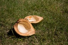 Free Empty Coconut Stock Photos - 5226773