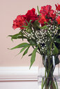 Free Flower Still Life Stock Images - 5234154