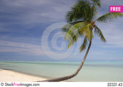 Free Idyllic Sandy Beach Stock Photos - 5233143