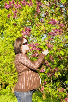 Pregnant Woman At Tree Royalty Free Stock Images