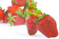 Free Strawberry Isolated On White (Shallow DOF) Royalty Free Stock Image - 5232776
