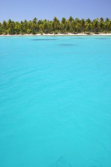 Free Lagoon Rangiroa Royalty Free Stock Image - 5233206