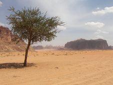 Free Desert Wadi Rum, Jordan Stock Images - 5236044