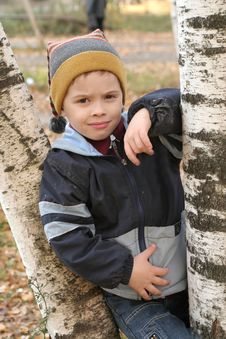 The Nice Boy Among Birches In The Autumn Afternoon Stock Image