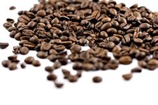 Free Coffee Beans Isolated, Shallow Depth Of Fiel Stock Photo - 5236970