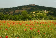 Free Poppy Field And Hilltop Town Stock Photo - 5239380
