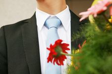Free Man With Tie Stock Photo - 5239450