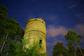 Free Old Brick Water Tower Surrounded With Pines Stock Image - 52385651
