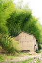 Free Old House Among Bamboo Stock Image - 5247221