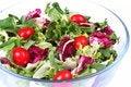 Free Fresh Salad Mix Stock Image - 5249621