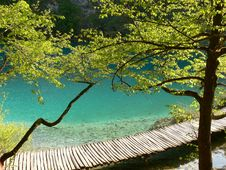 Free Summer Lake Stock Images - 5242034