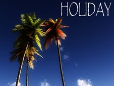 Free Holiday Wild Palms 12 Royalty Free Stock Photography - 5242577