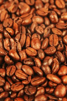 Free Coffee Beans Royalty Free Stock Images - 5243509