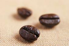 Free Coffee Beans Stock Image - 5243521