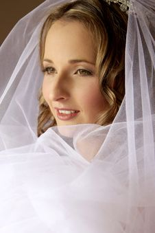 Free Veil Stock Photos - 5244663