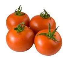 Free Tomato2 Royalty Free Stock Image - 5244736