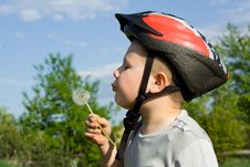 Free Boy Blowing Dandelion Stock Photos - 5245423