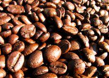 Free Coffee-beans Royalty Free Stock Photos - 5246008