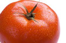 Free Tomato Royalty Free Stock Photos - 5246538