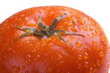 Free Macro Tomato Royalty Free Stock Image - 5246546