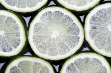 Free Lemon Royalty Free Stock Images - 5246569