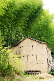Free Old House Among Bamboo Royalty Free Stock Photo - 5247215