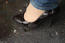 Free Shoe Royalty Free Stock Photos - 5249158
