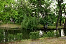 Saratov City Park In The Summer. Saratov, Russia Stock Photo