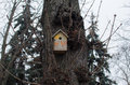 Free Birdhouse Stock Photos - 52426523