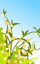 Free Design Summer Floral Background Stock Photography - 5255062