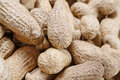 Free Peanut Background Stock Images - 5255814