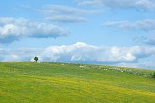 Free Landscapes Stock Images - 5250244