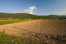 Free Ploughed Field With Mountain Royalty Free Stock Photo - 5252665