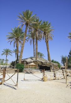 Free Bedouin Village Royalty Free Stock Images - 5254839