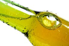 Bottle Of Beer Closeup Royalty Free Stock Photo
