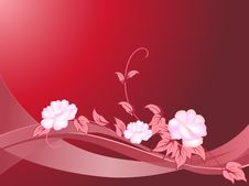 Floral And Curl On Red Background Stock Photos