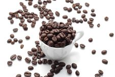 Free Coffee Seed Royalty Free Stock Photography - 5256547