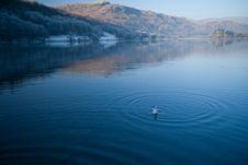 Free Calm Lake Royalty Free Stock Image - 5256556